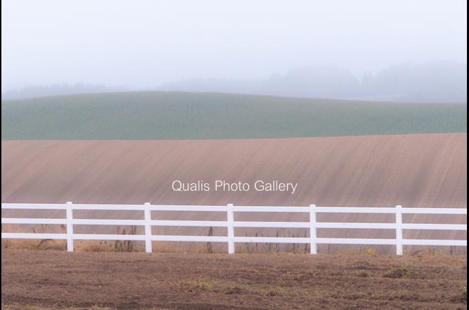 qqq23-1.jpg