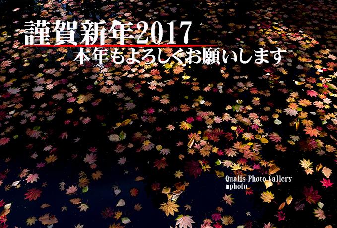 年賀状2017_1.jpg