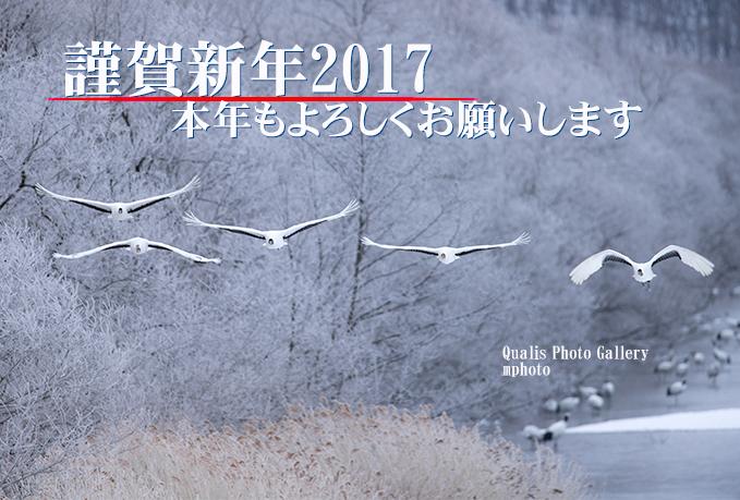 年賀状2017_3.jpg