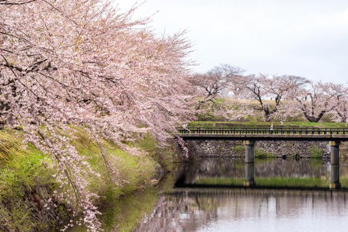春の風が静かに流れていた-7.jpg