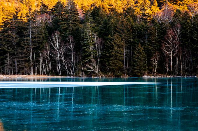 秋と冬と色の境界-5.jpg