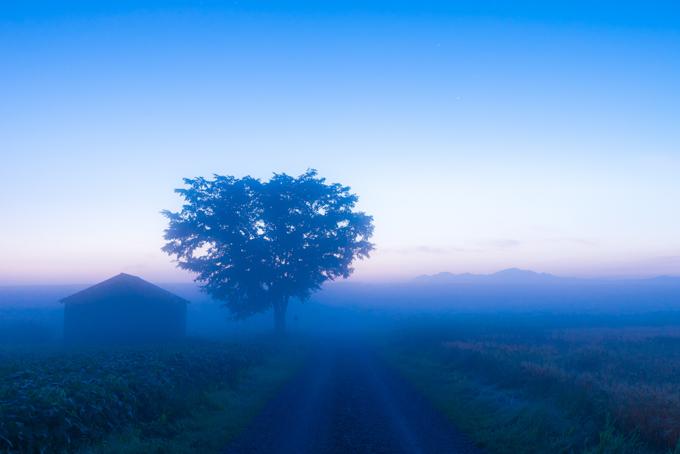 蒼い朝の境界-10.jpg
